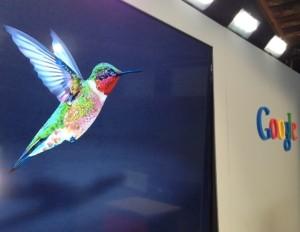 Google Hummingbird (Google Colibrì) e il SEO